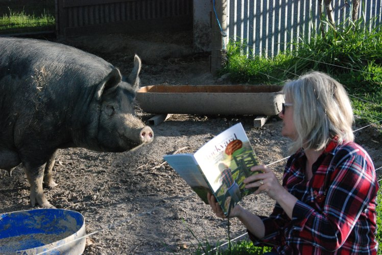 Author and pig